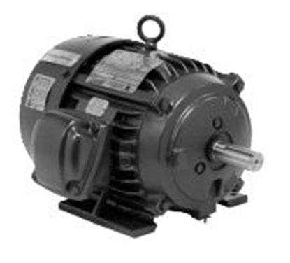 Picture of X100P2B , General Purpose Div. 1 Hazardous Location, Dual Label Motor